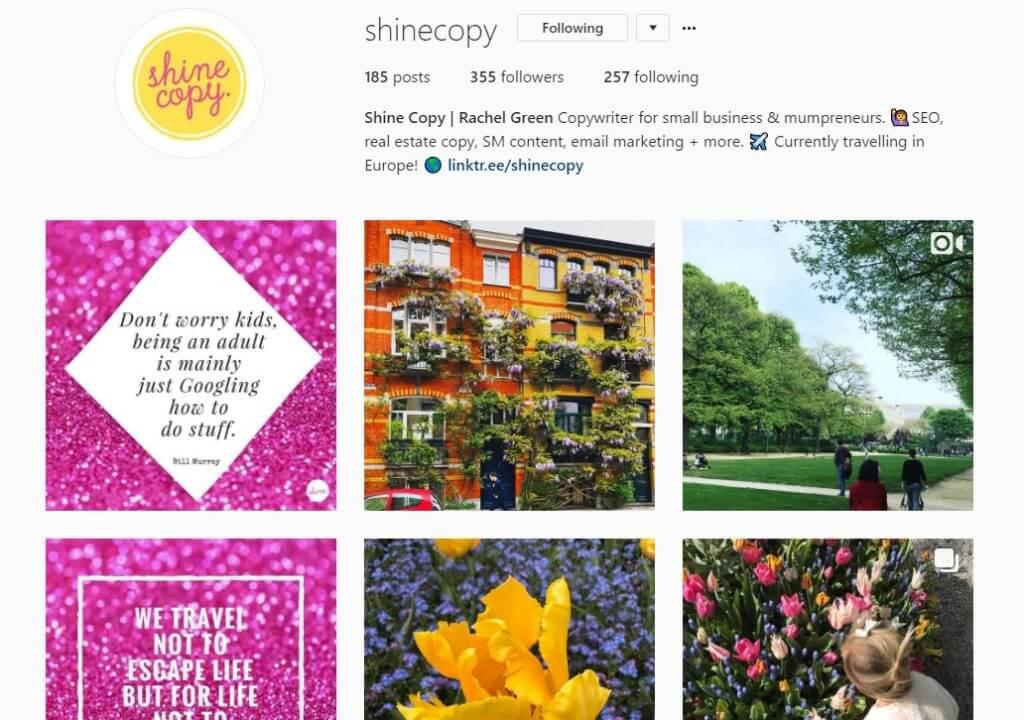 instagram bio shine copy