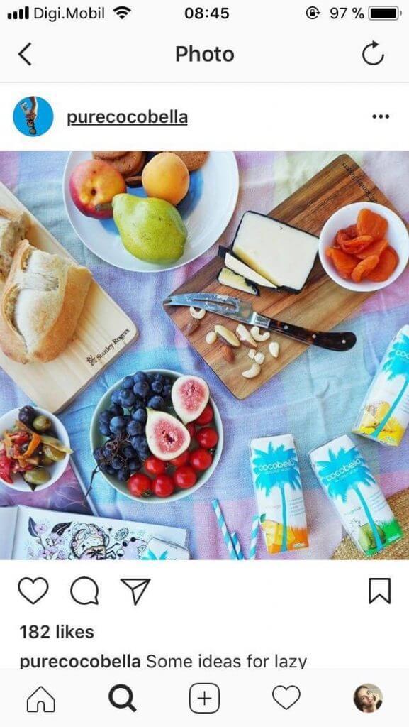 picnic-spreads-purecocobella