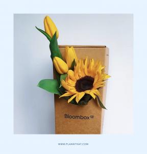 Florist Instagram accounts